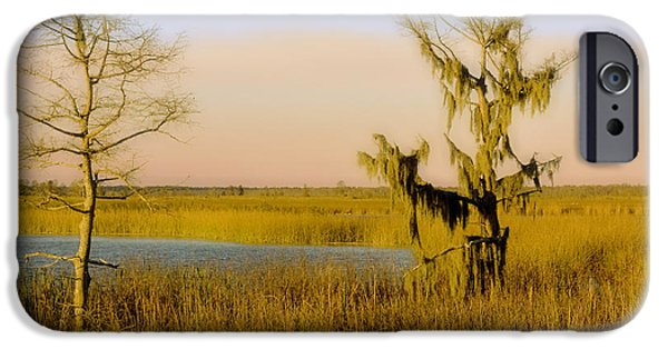 Mangrove Forest iPhone Cases - Mississippi Farragut Lake iPhone Case by Manuel Lopez
