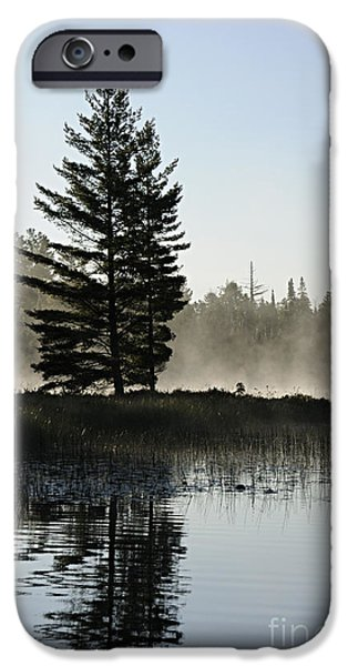 Bwcaw iPhone Cases - Mist and Silhouette iPhone Case by Larry Ricker