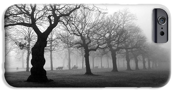 Mist iPhone Cases - Mist in the park iPhone Case by Mark Rogan