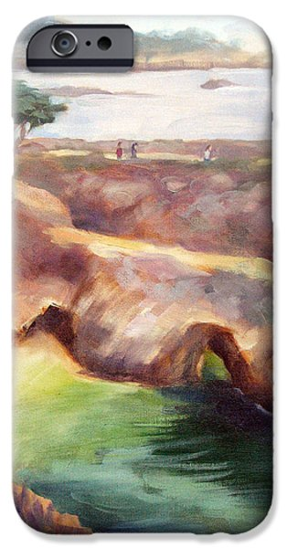 Point Lobos State iPhone Cases - Misty Afternoon China Cove iPhone Case by Karin  Leonard