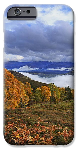 Misty day in the Cairngorms II iPhone Case by Louise Heusinkveld