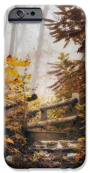 Fog Mist iPhone Cases - Misty Footbridge iPhone Case by Scott Norris
