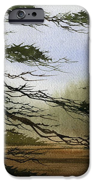 Misty Forest Bay iPhone Case by James Williamson