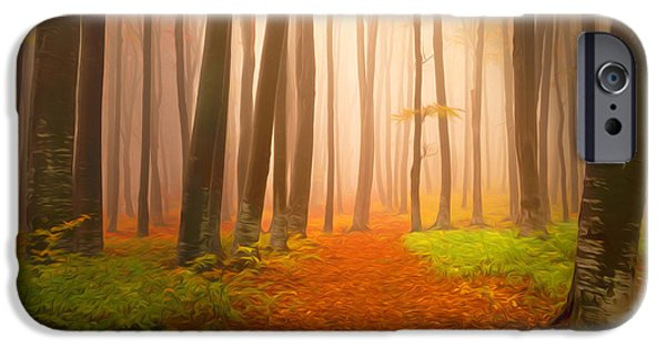 Asphalt Paintings iPhone Cases - Misty forest in autumn with trees iPhone Case by Lanjee Chee