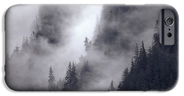 Fog Mist iPhone Cases - Misty Forest iPhone Case by Ron Sanford