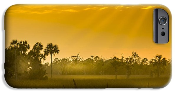Floods Photographs iPhone Cases - Misty Glade iPhone Case by Marvin Spates