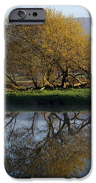 Misty Golden Sunrise Reflection iPhone Case by Christina Rollo