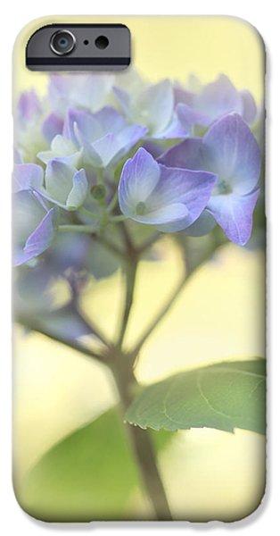 Purple Hydrangeas iPhone Cases - Misty Hydrangea Flower iPhone Case by Jennie Marie Schell
