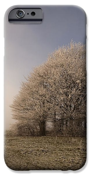 Misty Morn iPhone Case by Anne Gilbert