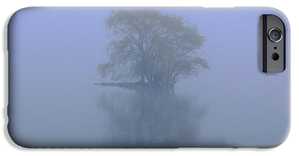 Willow Lake iPhone Cases - Misty Morning at Jamaica Pond iPhone Case by Juergen Roth