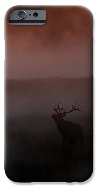 Misty Morning Elk iPhone Case by Gary Langley