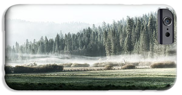 Meadow Photographs iPhone Cases - Misty morning in Yosemite iPhone Case by Jane Rix