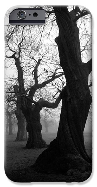 Fog Mist iPhone Cases - Misty Morning iPhone Case by Mark Rogan