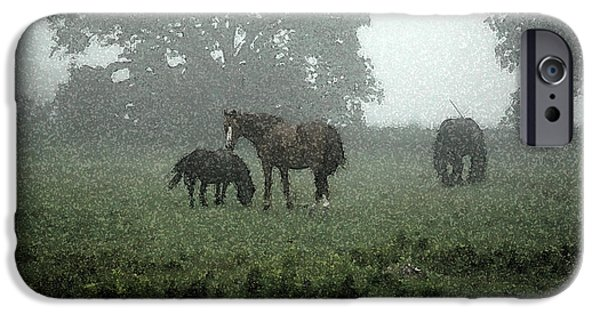 The Horse iPhone Cases - Misty Morning iPhone Case by Melanie Prosser