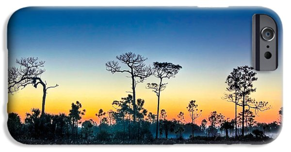 Pines iPhone Cases - Misty Morning iPhone Case by Rich Leighton