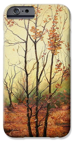 Autumn iPhone Cases - Misty Morning iPhone Case by Sorin Apostolescu