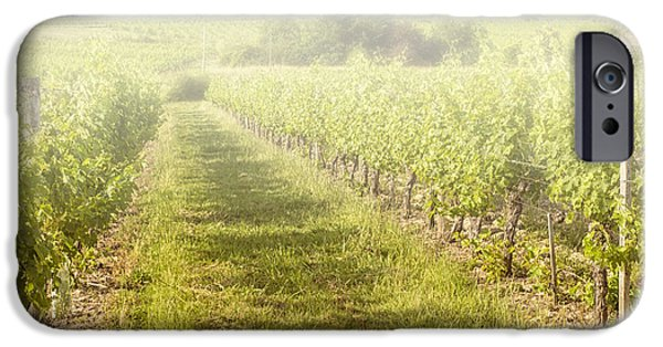 South West France iPhone Cases - Misty Morning Vineyard iPhone Case by Nomad Art And  Design