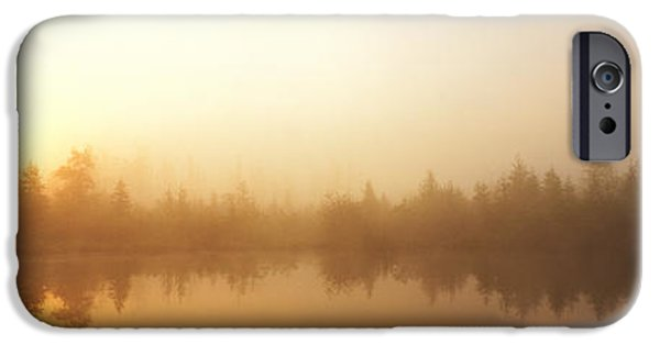 Innocence iPhone Cases - Misty Morning, Volvo Bog, Illinois, Usa iPhone Case by Panoramic Images