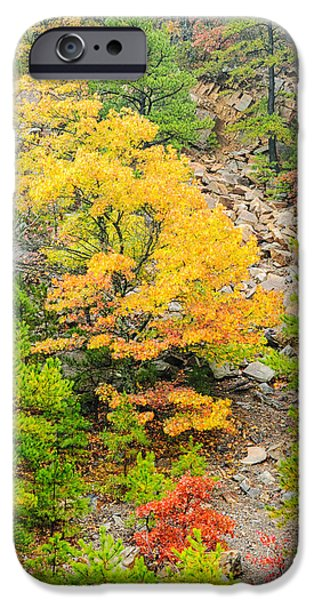 Arkansas iPhone Cases - Misty Mountain Tree - Talimena Scenic Byway - Arkansas to Oklahoma iPhone Case by Silvio Ligutti