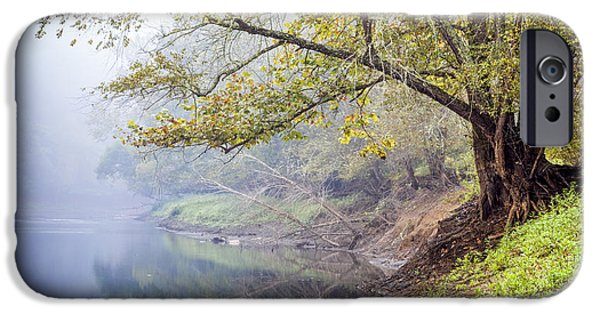 Willow Lake iPhone Cases - Misty Trees iPhone Case by Debra and Dave Vanderlaan