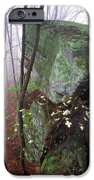 Misty Woods iPhone Case by Thomas R Fletcher
