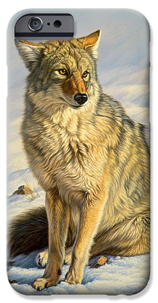 Coyote iPhone Cases - Misunderstood iPhone Case by Paul Krapf