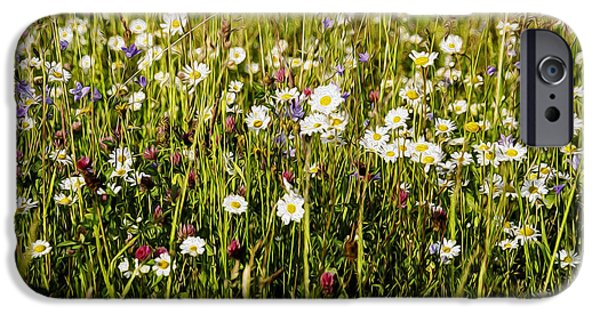 Meadow Digital iPhone Cases - Mixed Flowers iPhone Case by Aged Pixel