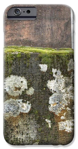 Moldy above and below iPhone Case by Jean Noren