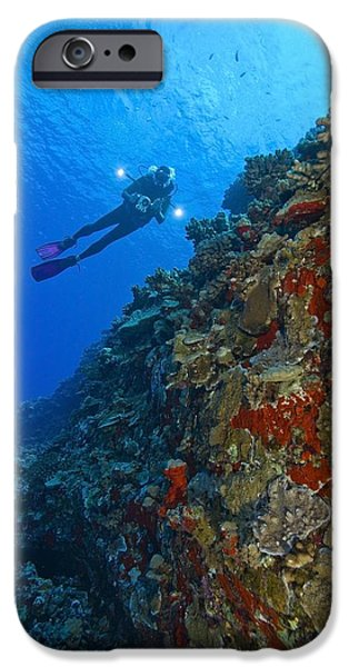 Free-diver iPhone Cases - Molokini Maui Hawaii Usa Scuba Diver At iPhone Case by Stuart Westmorland