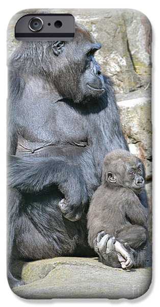 Bonding iPhone Cases - Momma and Baby Gorilla iPhone Case by Jim Fitzpatrick