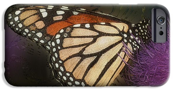 Merging iPhone Cases - Monarch Butterfly iPhone Case by Jack Zulli