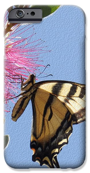 Google Mixed Media iPhone Cases - Swallowtail iPhone Case by Michael Lovell