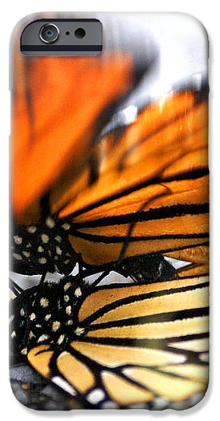 Monarchs in Love iPhone Case by Thomas Bomstad