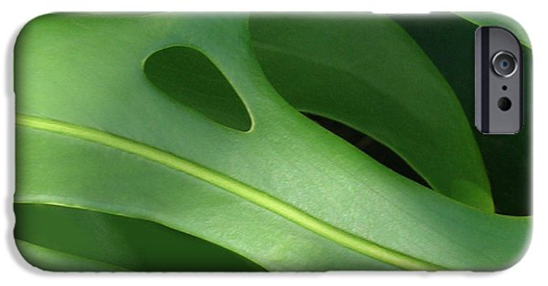 Flora iPhone Cases - Monstera iPhone Case by James Temple