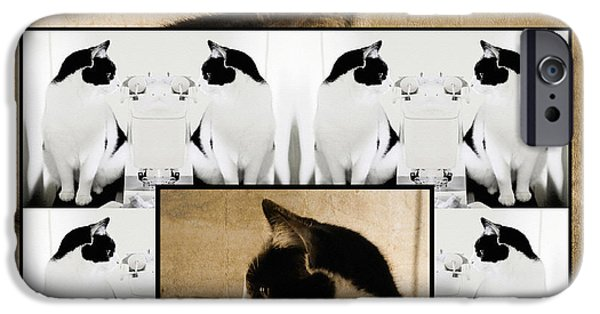 Photos Of Cats iPhone Cases - Montage of a Pet Cat iPhone Case by Constance Lowery