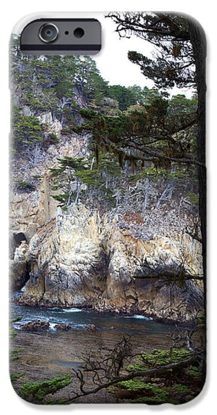 Monterey Rock Pines and Cypress iPhone Case by Viktor Savchenko