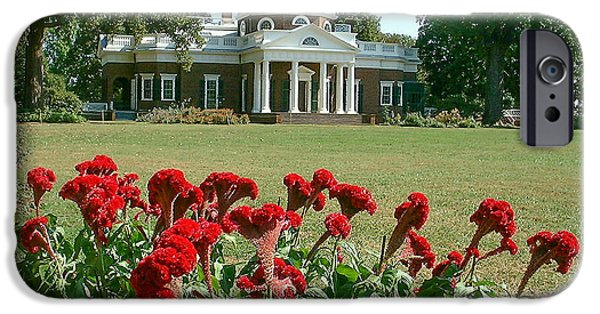 President iPhone Cases - Monticello cockscomb in bloom iPhone Case by David Nichols
