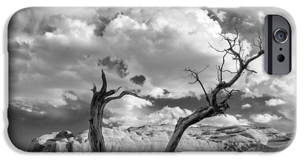 Recently Sold -  - Nation iPhone Cases - Monument Valley Juniper Tree and Mesa iPhone Case by Silvio Ligutti