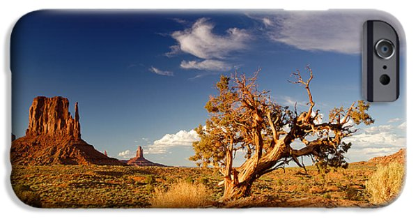 Northern Arizona iPhone Cases - Monument Valley Lone Juniper and West Mitten. iPhone Case by Silvio Ligutti
