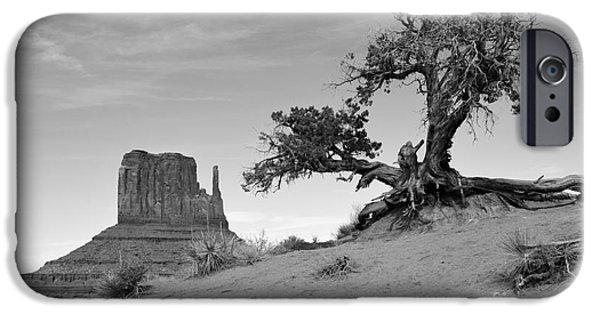 Arizona iPhone Cases - Monument Valley Tree and Monolith Scenic Landscape Black and White iPhone Case by Shawn O