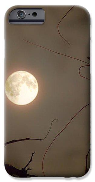 Moon Behind Branches iPhone Case by Deborah Smolinske