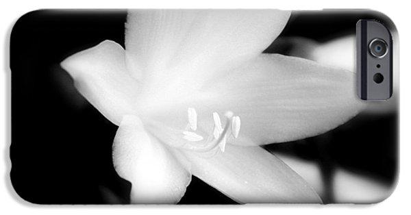 Recently Sold -  - Moonscape iPhone Cases - Moon Flower iPhone Case by Glenn Curtis
