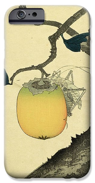 Moon Persimmon and Grasshopper iPhone Case by Katsushika Hokusai