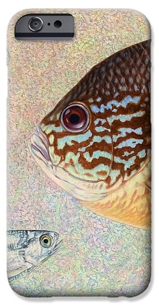 Mooneyes Sunfish iPhone Case by James W Johnson