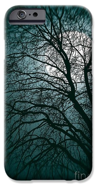 Creepy iPhone Cases - Moonlight Forest iPhone Case by Carlos Caetano