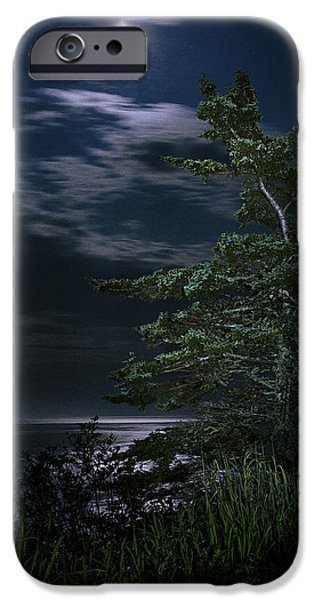 Quoddy iPhone Cases - Moonlit Treescape iPhone Case by Marty Saccone