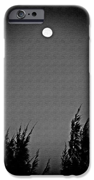 Moonscape iPhone Cases - Moonshine iPhone Case by Aimee L Maher Photography and Art