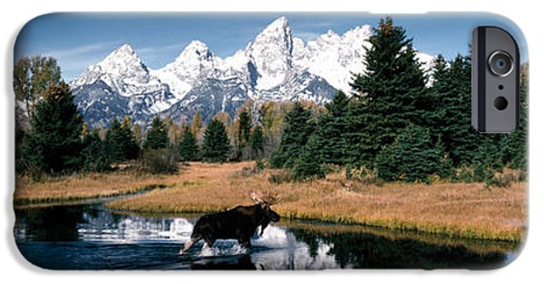 Snow iPhone Cases - Moose & Beaver Pond Grand Teton iPhone Case by Panoramic Images