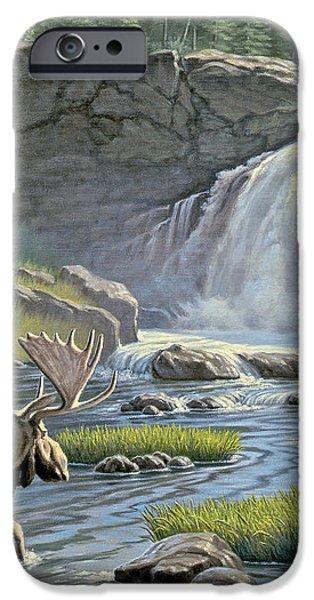 Moose Falls iPhone Case by Paul Krapf