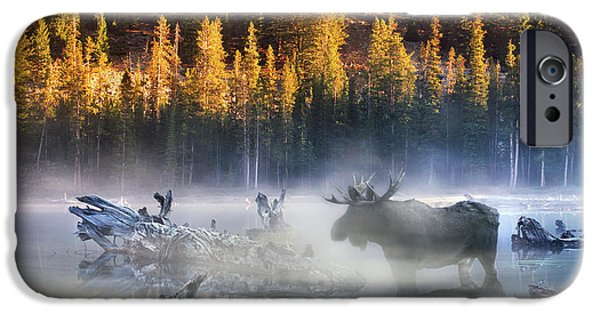 Recently Sold -  - Fog Mist iPhone Cases - Moose Lake iPhone Case by Leland D Howard